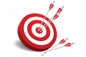 Performance-Review-and-Setting-of-Annual-Targets